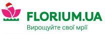 Интернет магазин Флориум: растения для вашего сада